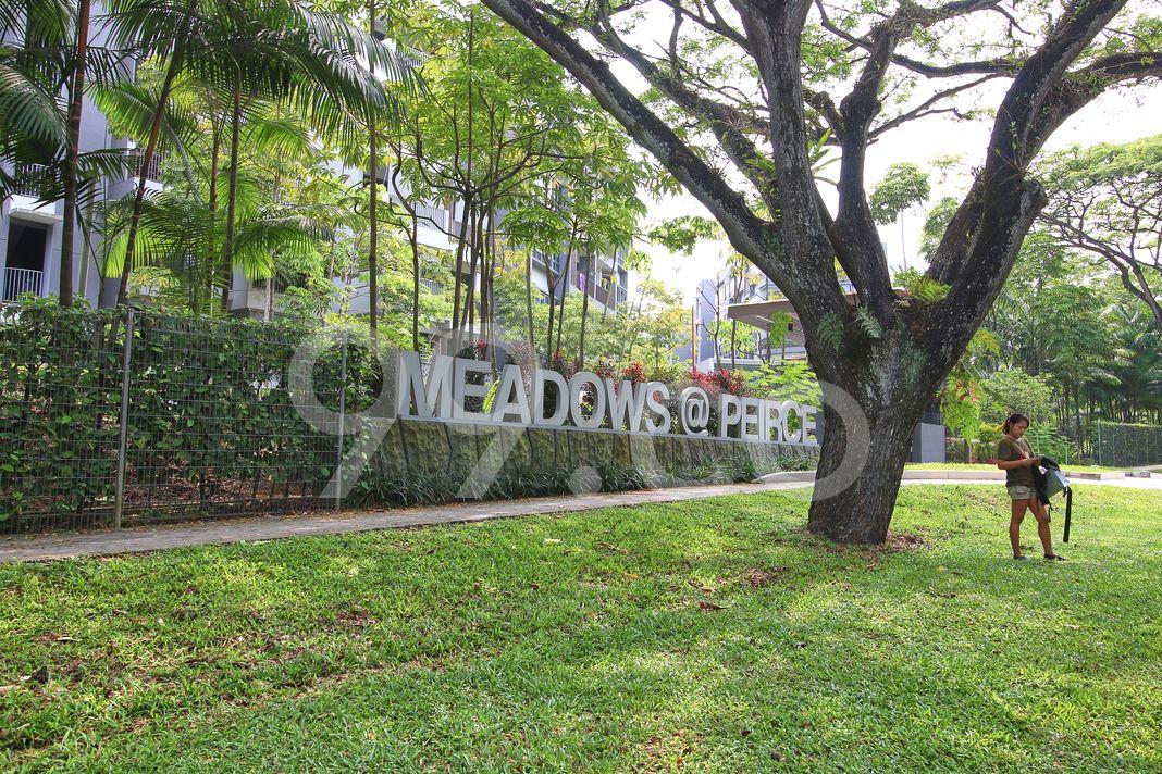 Meadows @ Peirce  Logo