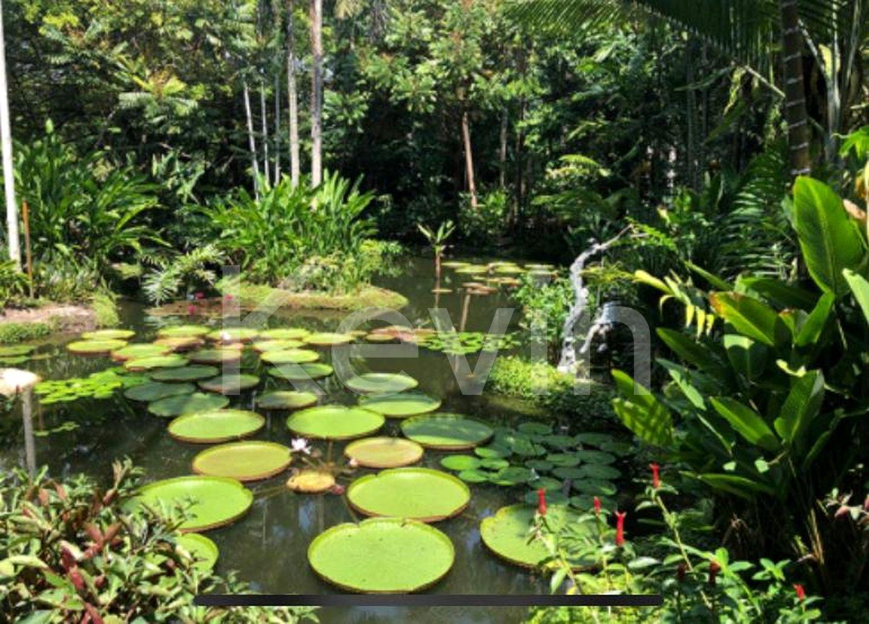 Nearby Botanical Garden