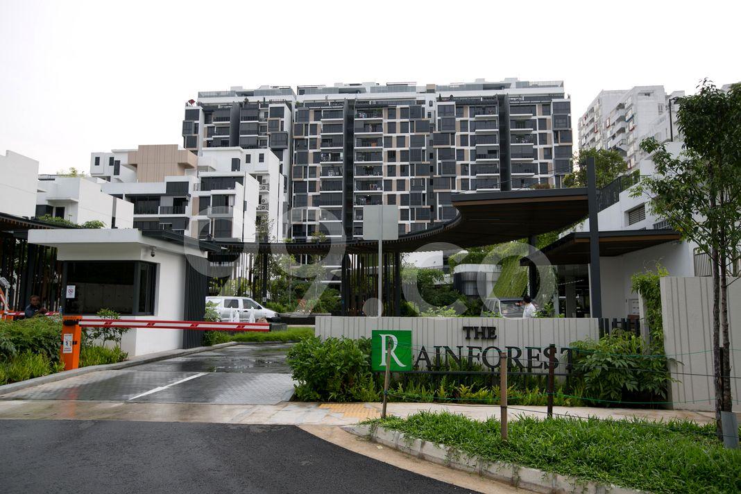 The Rainforest  Entrance
