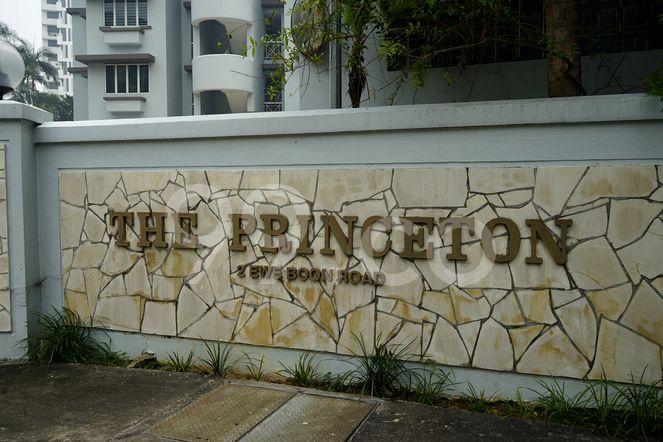 The Princeton The Princeton - Logo