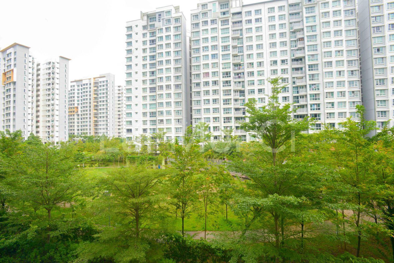 Serene Greenery View