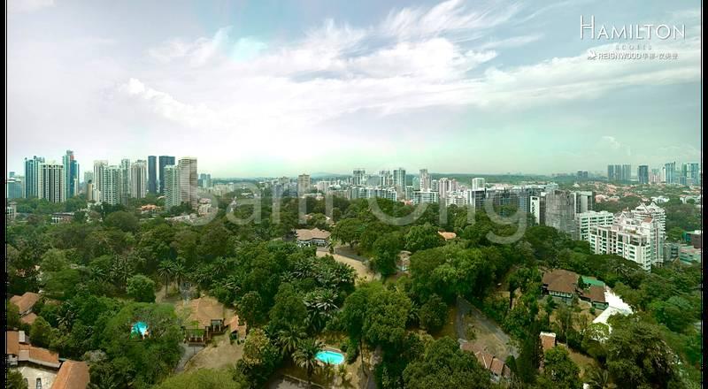 The Panoramic Lush Greenery View