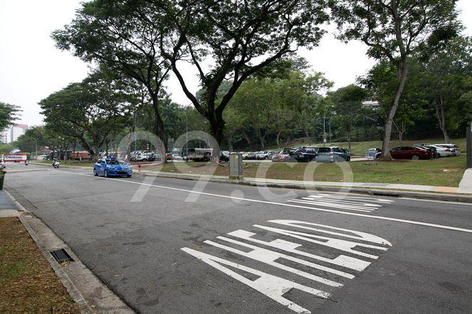 The Mkz The Mkz - Street