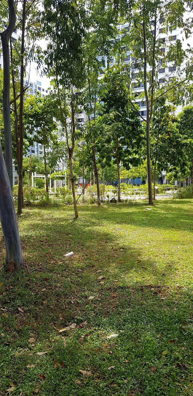 Greenery Park
