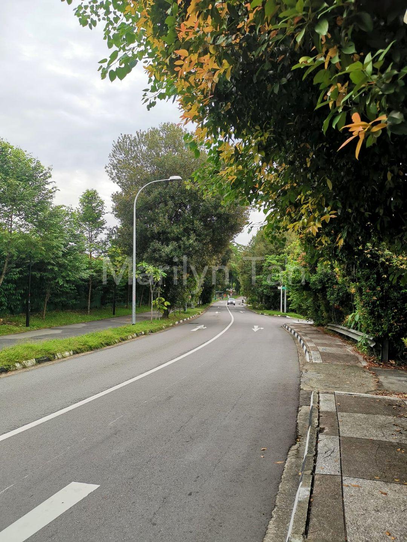 The road to Home - Sembawang Road