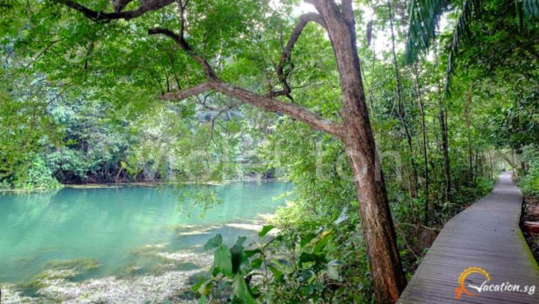 Machritchi Forest trail