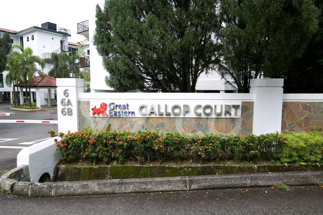 Gallop Court  Logo