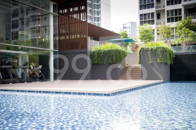 Sea Esta Pool