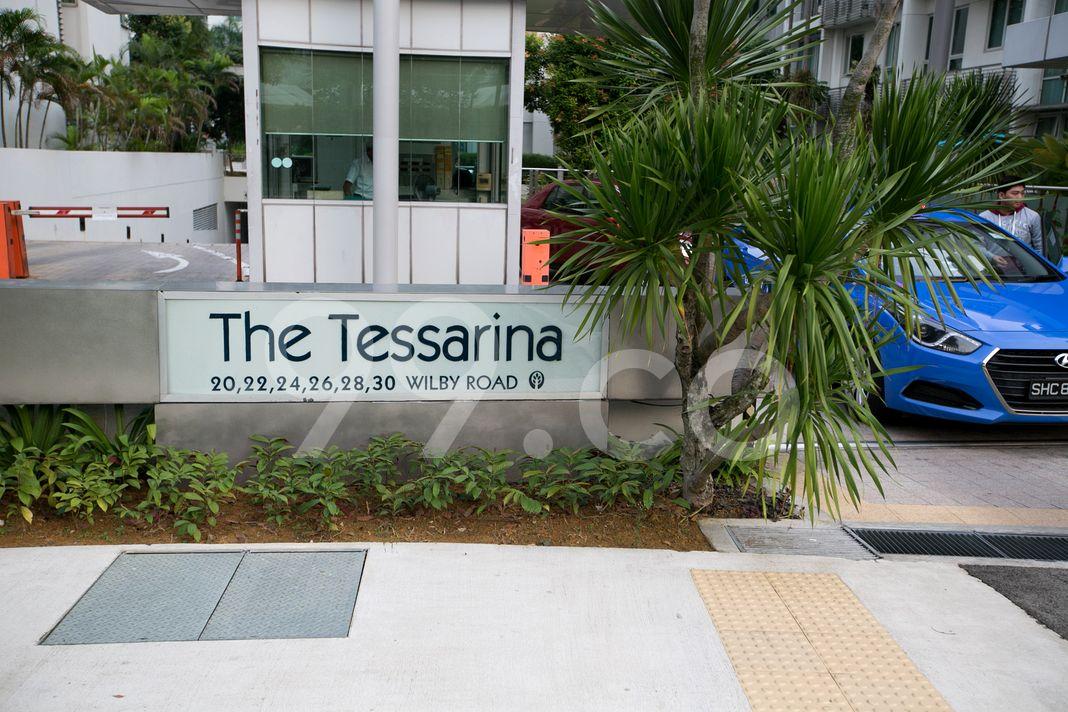 The Tessarina  Logo