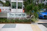 The Tessarina - Logo