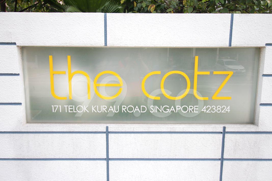 The Cotz  Logo