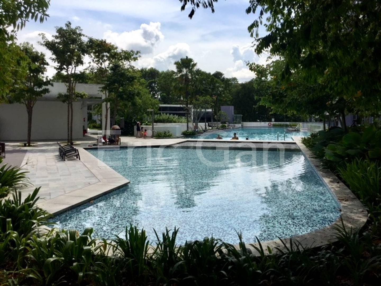 Swimming Pools (Level 5)
