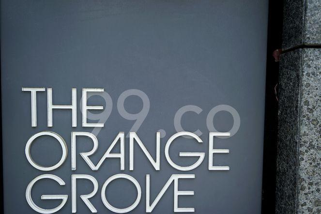 The Orange Grove The Orange Grove - Logo