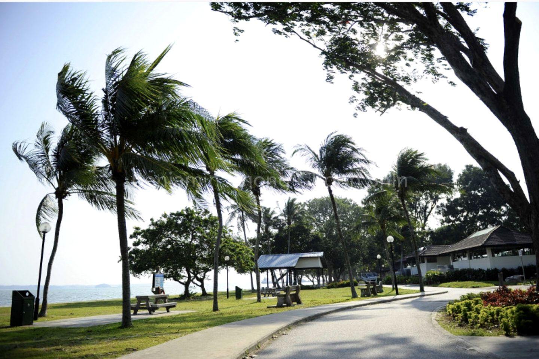 Singapore's Most Famous Beach, East Coast Park
