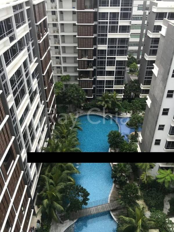 High Floor Pool View