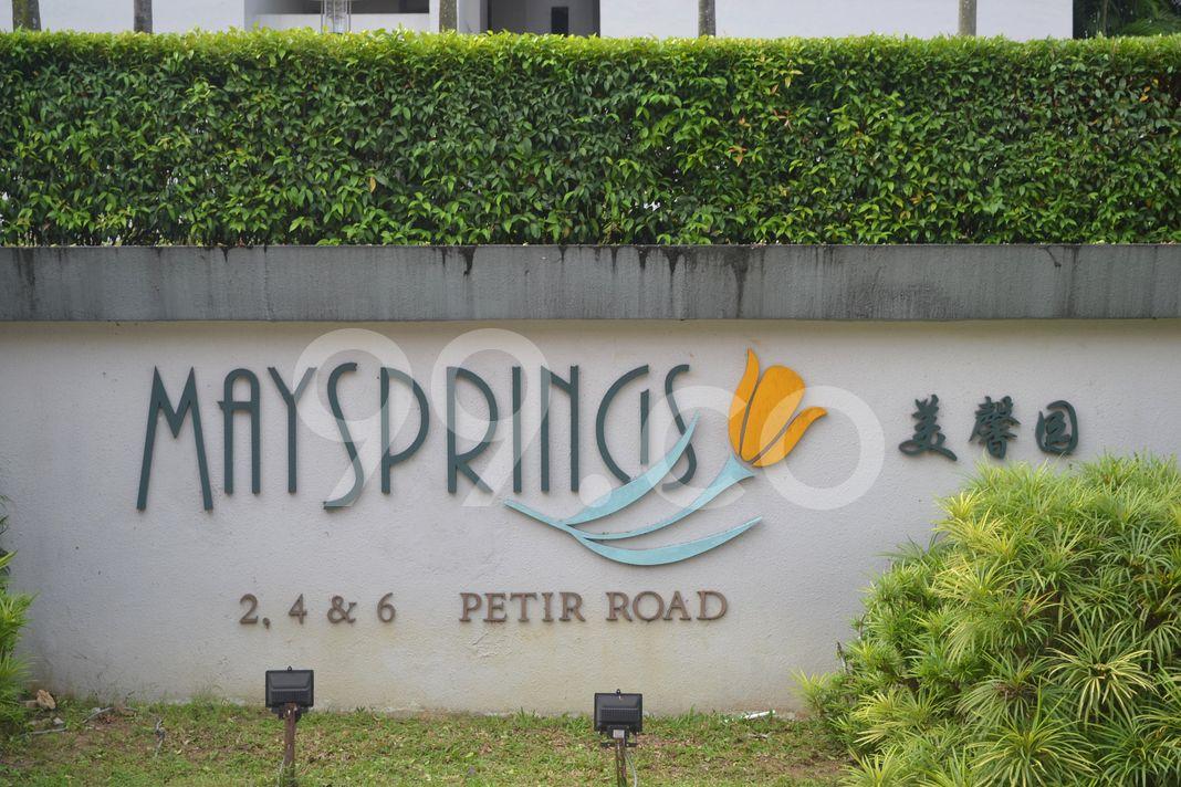 Maysprings  Logo