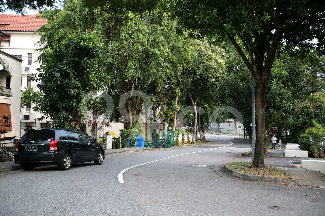 Point Loma  Street