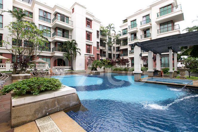 Palm Haven Pool