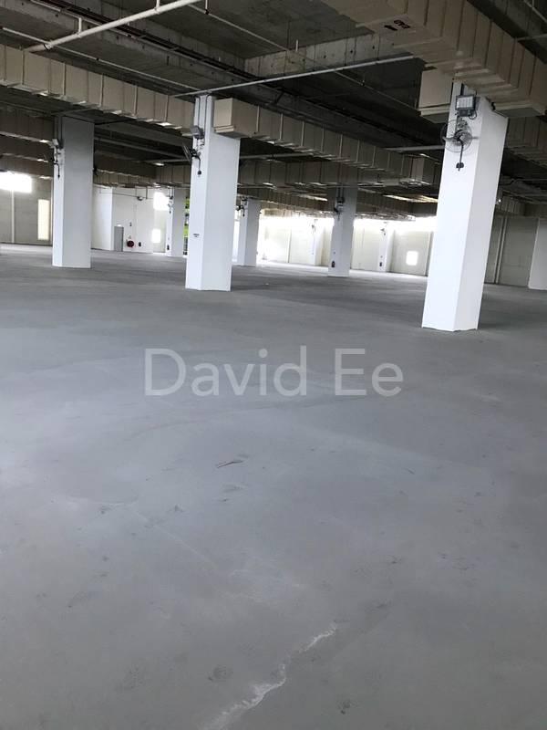 6 m ceiling