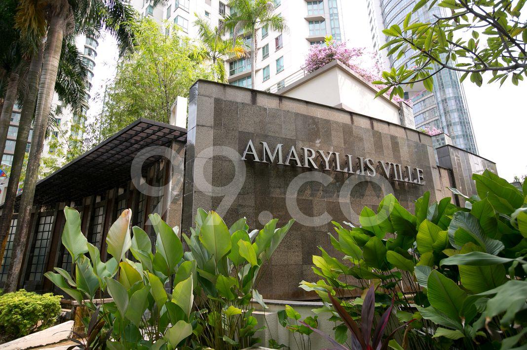 Amaryllis Ville  Logo
