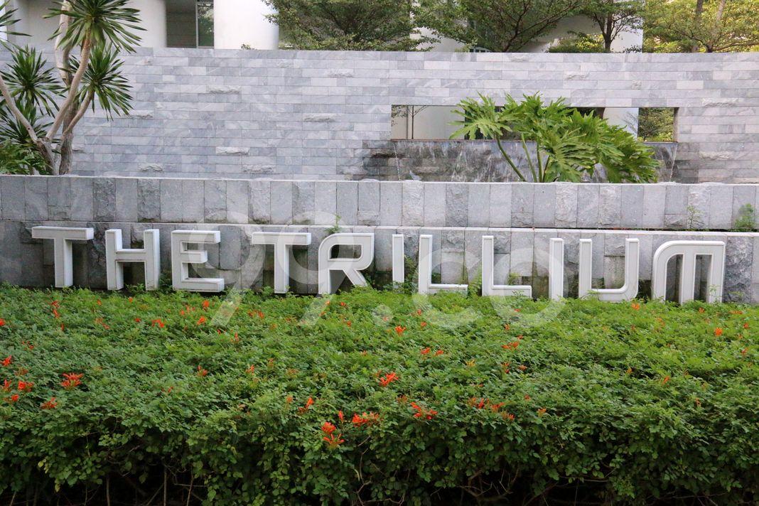 The Trillium  Logo