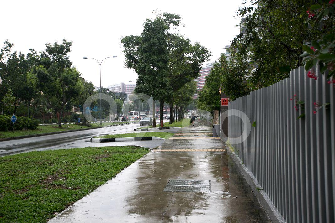 Terrene At Bukit Timah  Street