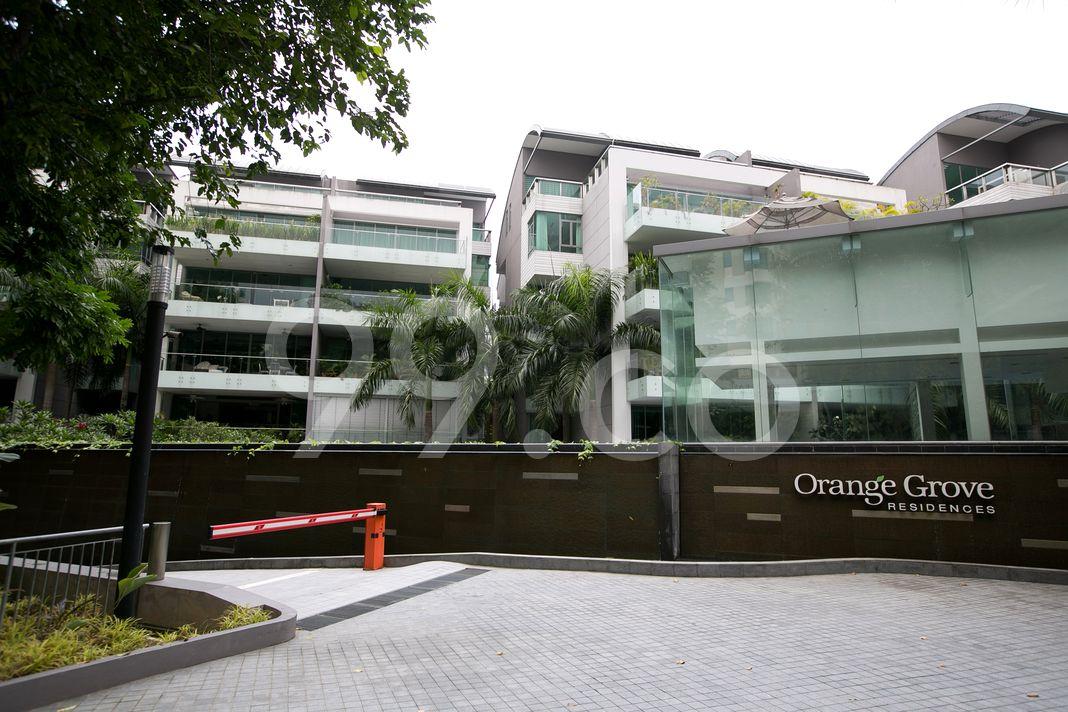 Orange Grove Residences  Elevation