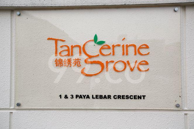 Tangerine Grove Tangerine Grove - Logo