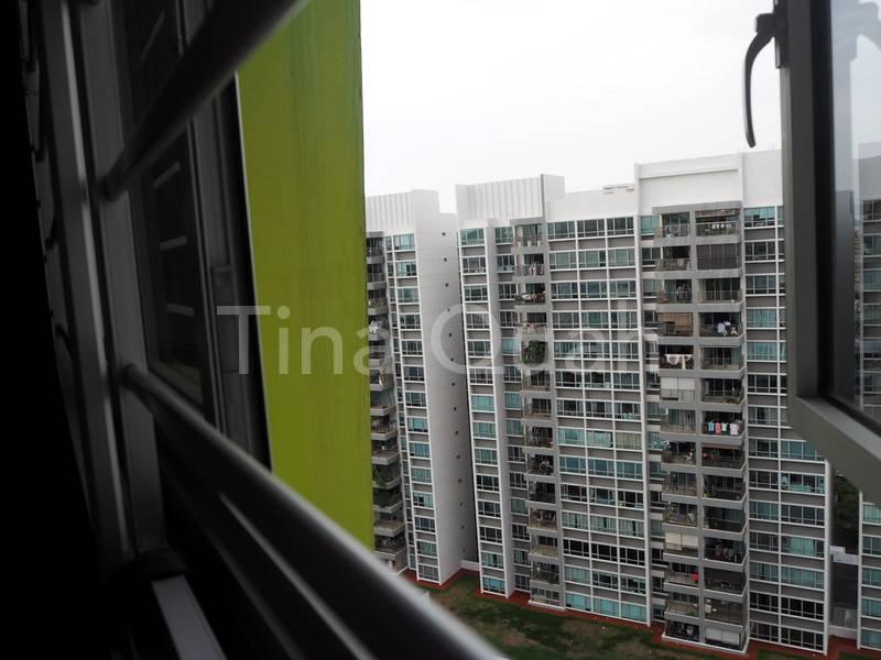 Living Hall View