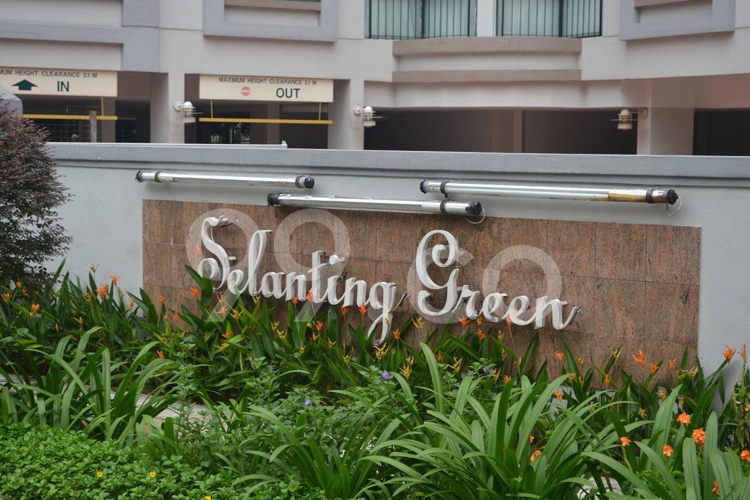 Selanting Green  Logo