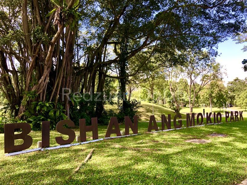 Close Proximity to Bishan-Ang Mo Kio Park