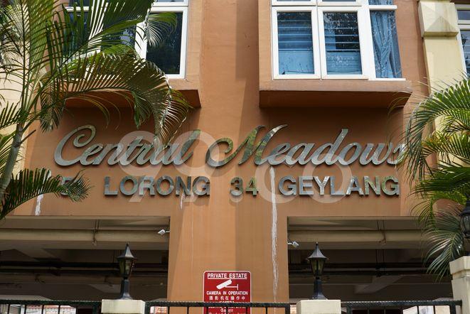Central Meadows Central Meadows - Logo