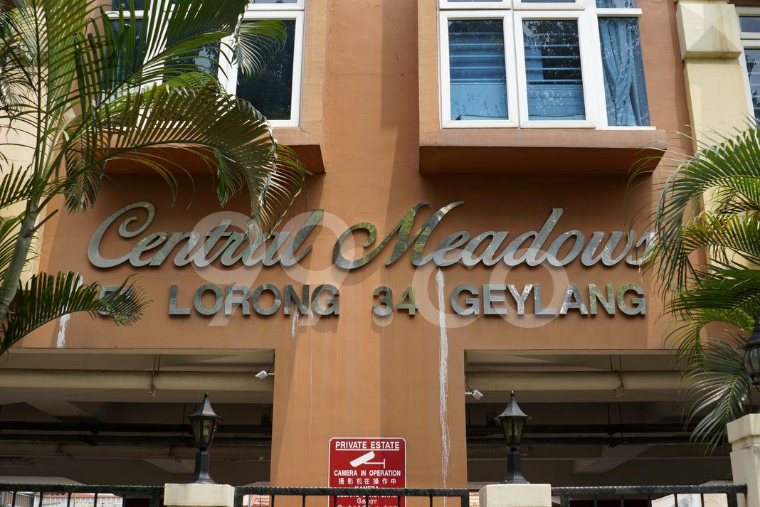 Central Meadows  Logo