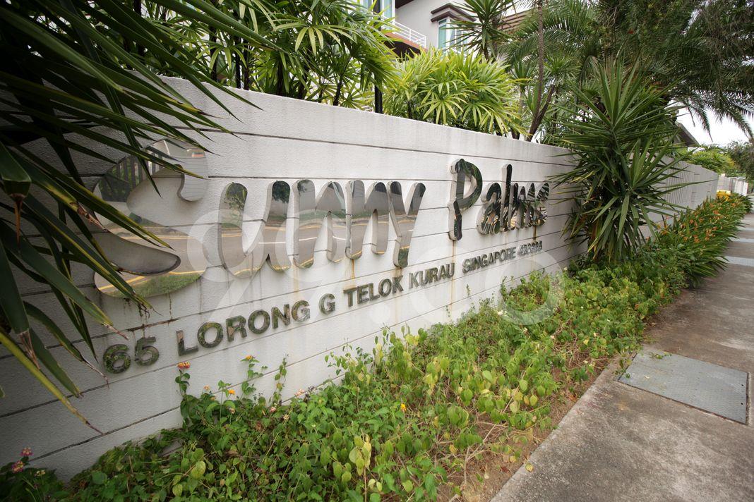 Sunny Palms  Logo